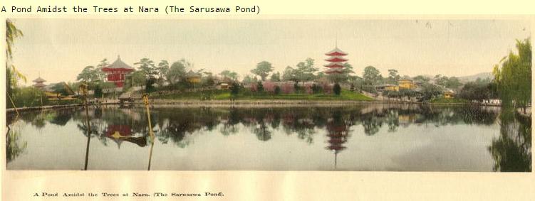Sarusawa Pond view